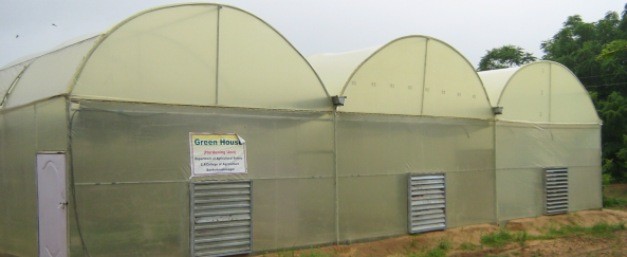 Forced Ventilated Greenhouse